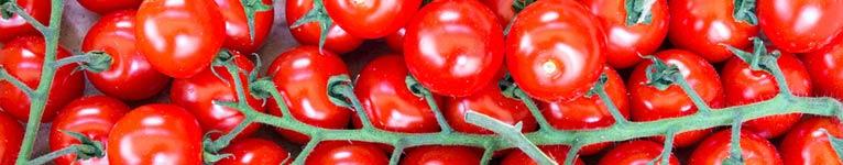 Saucen_tomatig