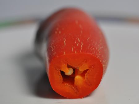 anbau-6