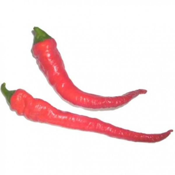 Cayenne Thick Chili Samen B-Ware