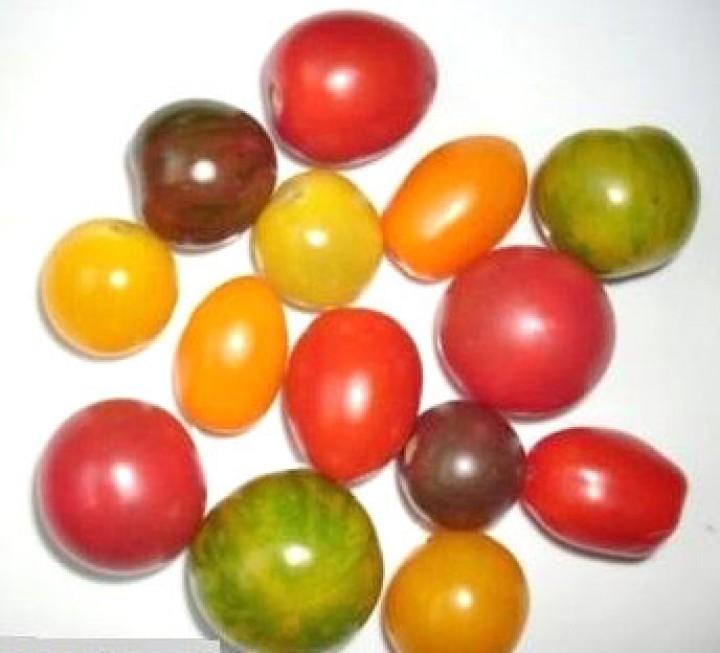 Tomaten Samen Mix