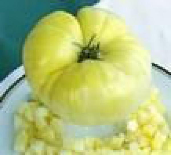 Great White Beefsteak Tomaten Samen