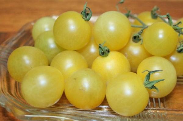 White Cherry Tomaten Samen