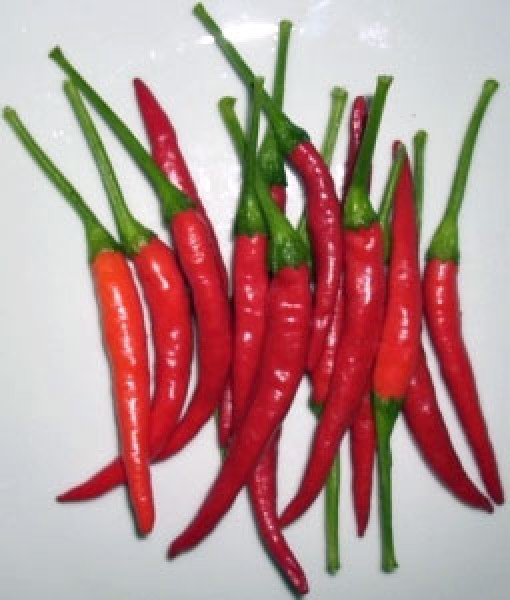 Thai Ladyfinger Chili Samen