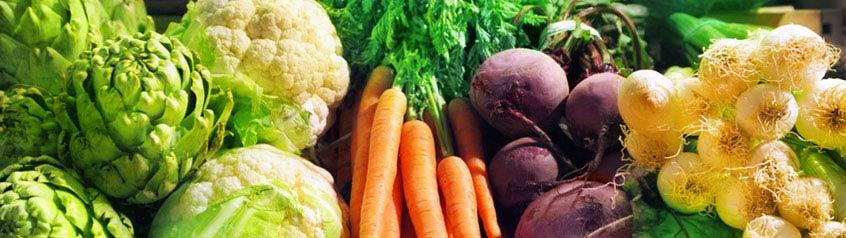 Gemüse-Samen