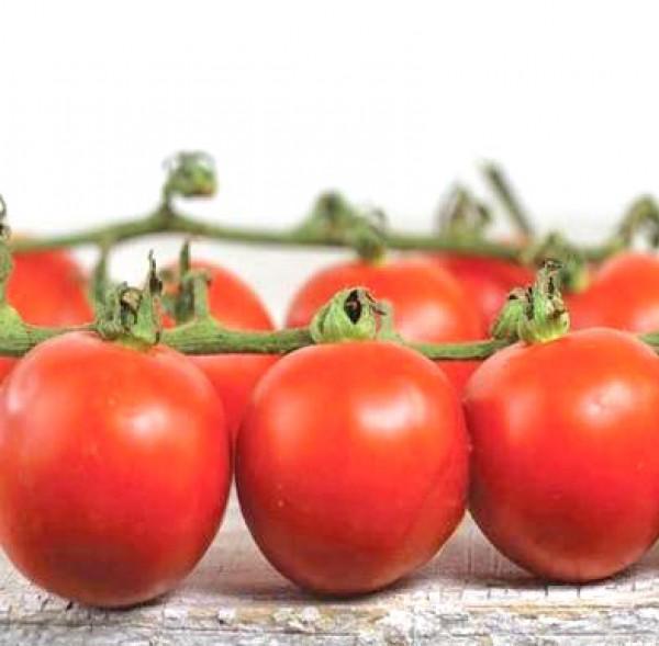 Chadwick Cherry Tomaten Samen