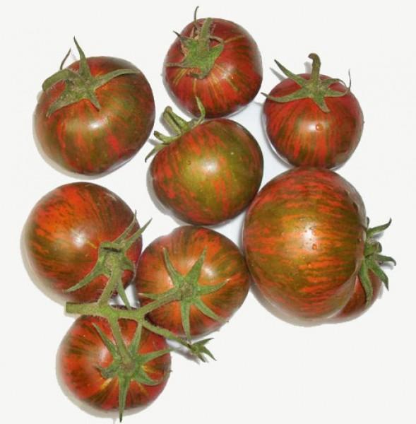 black zebra tomaten samen bestellen chili chili food. Black Bedroom Furniture Sets. Home Design Ideas