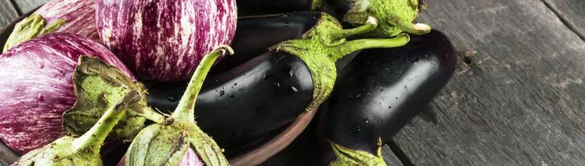 Auberginen & Zucchini